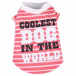 Doggydolly BIG DOG Hundeshirt Coolest Dog orange